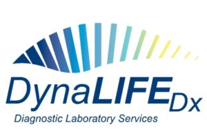 DynaLIFE revised